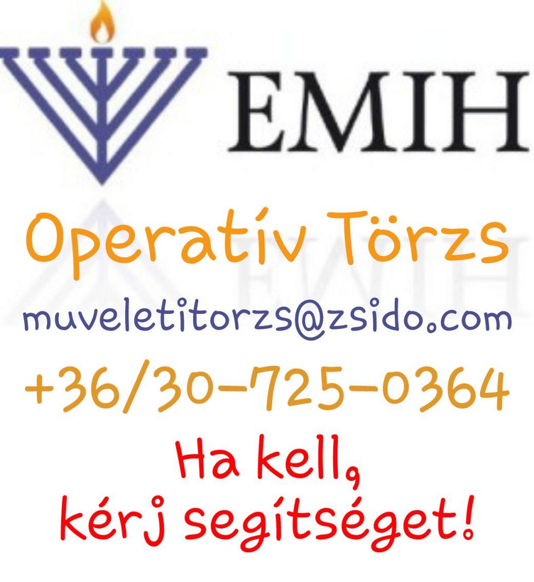 EMIH Operatív Törzs, Zsidó segítség