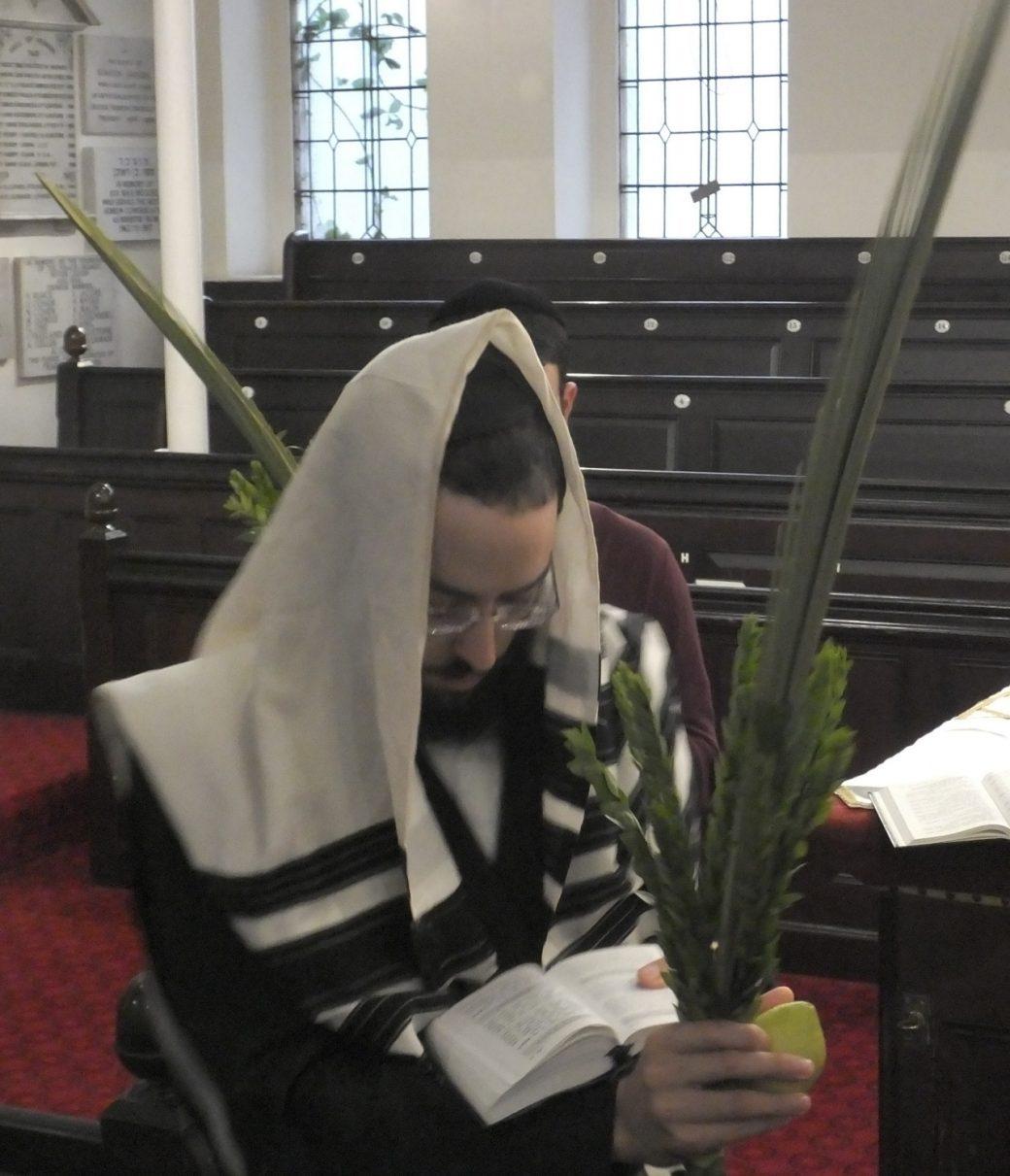 Bristol, Synagogue, Sukkot, Luláv, Rabbi