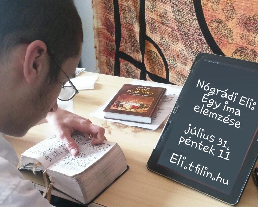 Nógrádi Eli: Why ima értelmezése