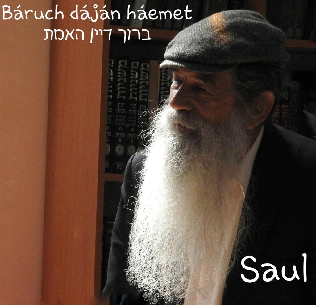 שאול בן אברהם Zorándy László Attila Saul ben Abraham